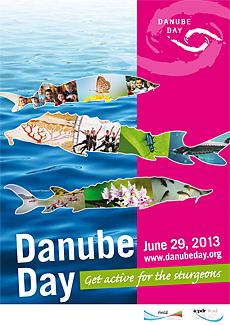 DanubeDay_Poster2013